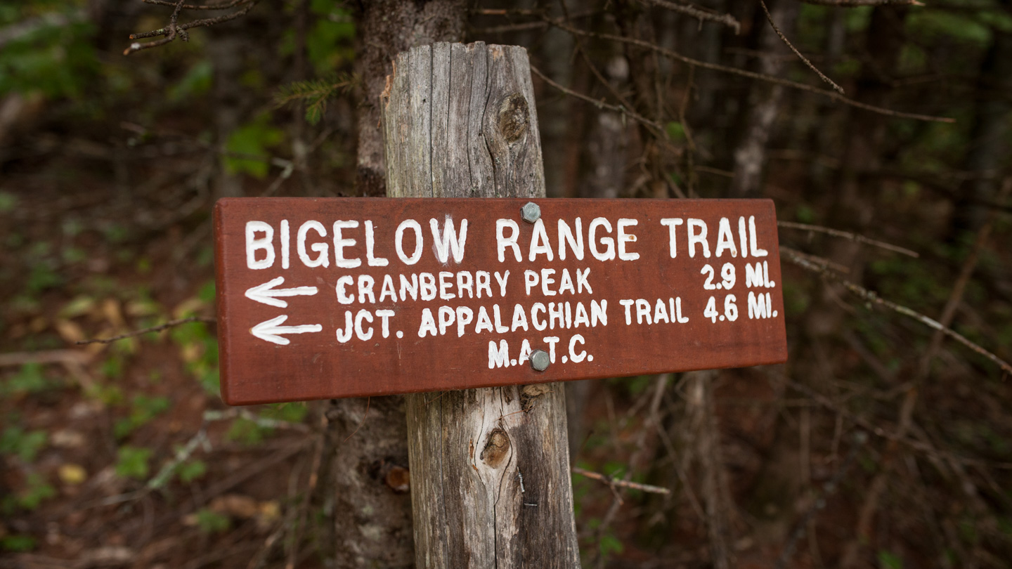 bigelow_traverse_web_mg_5711